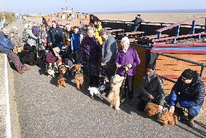 Some of the dogs and their owners who went on a Puppies and Pawsecco beach walk from the Admiral Benbow bar in Chapel St Leonards.