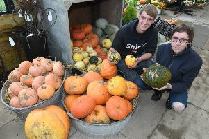 Bells Pumpkin Patch. L-R Liam Johnson and Jake Blakey of Coningsby. EMN-191014-093101005