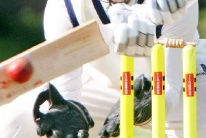 The latest local cricket news