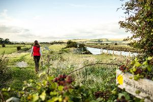 Autumn in the South Downs - courtesy of South Downs National Park Authority