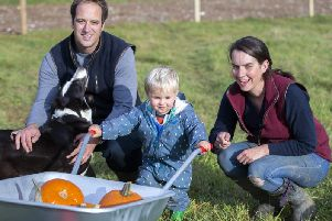 Tom, George and Lucy Harris pictured on their family farm in Moulton. Pictures by Kirsty Edmonds.