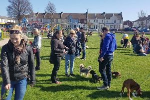 Eastbourne pooch party in the park 2019 SUS-190326-114014001