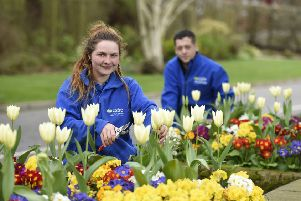 Horticulture students Rosie Hall  and David Kincaid springing into action getting Greenmount Campus, Antrim ready for the Open Day on Wednesday,  April 3,  3 - 8 pm. Picture: Michael Cooper
