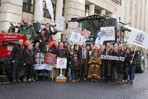 Young farmers at the Lord Mayor's Show in London, November 2018