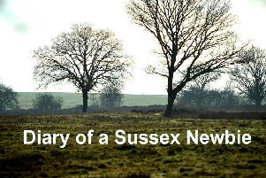 Diary of a Sussex Newbie SUS-181228-115116001 SUS-181228-115116001