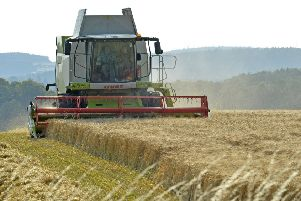 UK farmers could be left competing against much cheaper imported product