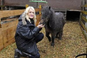 Irene Clarke with 'Pixie' the pony in 2012