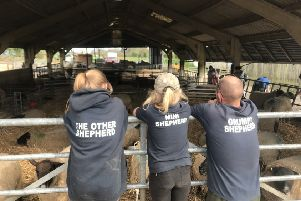Each volunteer wears a personalised uniform top with their unique title