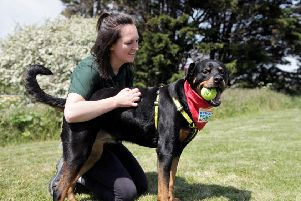 Alice Maltby, canine carer, with Rosa at Dogs Trust Shoreham