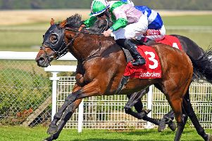 Rossa Ryan gets up on Duke of Hazzard to win the Celebration Mile / Picture by Malcolm Wells