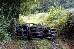 The tyres were dumped in the Shore Road area of Glynn.
