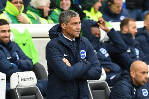 Brighton & Hove Albion boss Chris Hughton. Picture by PW Sporting Photography.