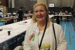 Lincolnshire Independents candidate, Marianne Overton.