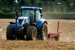 Incomes dropped in all Northern Ireland farming sectors except for cereals