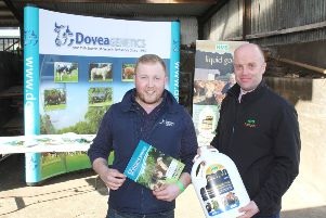 Eamon McGarry, Dovea Gentics and Paul Elwood, HVS Animal Health, discussing the tremendous results of a synchronised AI programme on 150 breeding heifers from the renowned Jalex herd, owned by Randalstown farmer James Alexander