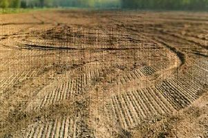 Damage to the field at Hillhead Road, Castledawson.