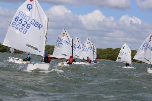 Close racing in the Optimist open at Chichester Yacht Club