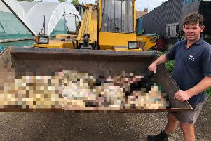 Patrick Green with the remains of his sheep that had been illegally killed and butchered. Photo: Northamptonshire Police