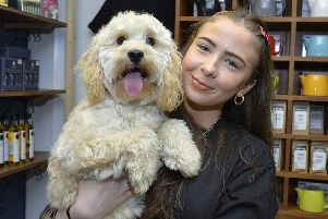 Nicole Gamble pictured with April, her Cockapoo, who won the recent 'Face of Warehouse Caf�' Facebook competition. The competition organised by Moria McClure, from the dog friendly caf� and Above and Beyond, attracted  an unexpected 500 entries. DER0819GS-026