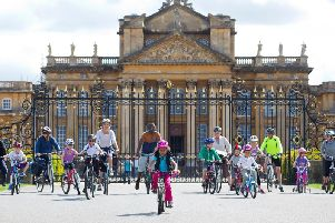 Blenheim bicycle day