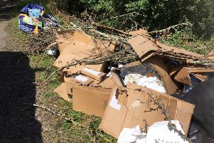 The waste that was dumped