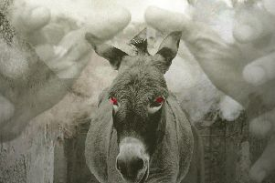 The Devil's Donkey is coming to the Nerve Centre this weekend.