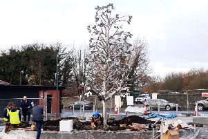 FINISHING TOUCHES... The Peace Tree is set in place ahead of its official unveiling at Ebrington on Friday afternoon.