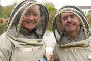 Valentine and Chris Hodges are checking on their bees at Greyabbey