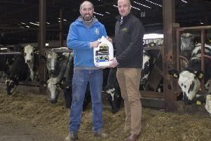 Paul Elwood, HVS Animal Heath will be at the Jalex Herd open day on Saturday, March 9 to discuss first hand how the Alexander family have benefited from using his Liquid Gold product