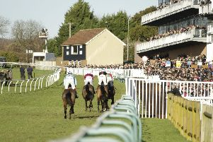 There's Boxing Day racing at Fontwell Park / Picture by Clive Bennett