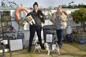 Sammie and Sue with their dogs in Mountney Drive, Pevensey Bay (Photo by Jon Rigby) SUS-190214-092637008