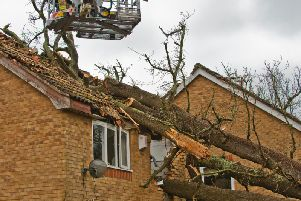 Tree hits Crawley home. Eddie Howland