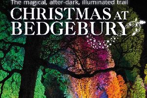 Christmas at Bedgebury returns selected dates from November 22  to December 30, 2019