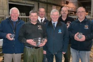 Northern Ireland Show Association - Clydesdale Championship 2018 winners being presented with their prizes from sponsor Kenneth Irwin, Bluegrass Horse Feed,s at the CLHBS Clydesdale Foal Show. Picture courtesy of Kathryn Mark.