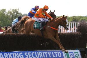 Double W's clears the last fence in the Wigley Group Carnival Handicap Chase. Picture: www.dwprattracingphotography.co.uk