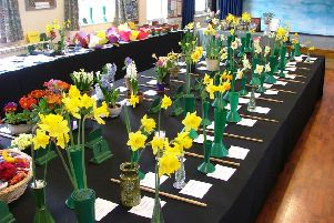 Crowhurst and District Horticultural Society Spring Flower Show 2018 SUS-190313-122613001