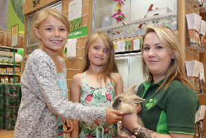 There's a chance to learn about caring for rabbits and other 'small furries' at Boston's Pets at Home this Easter.