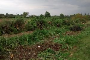 A reader-submitted photo showing the aftermath of the destruction of the hedgerows.