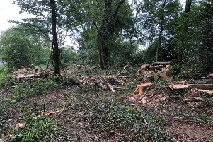 Dozens of trees in Balls Cross have been cut down, much to the anger of local residents