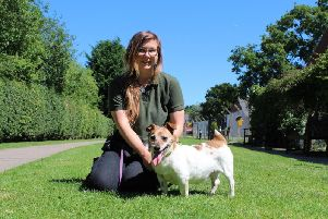 Tonks with canine carer Megan Gourlay. Photo supplied.