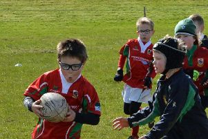 Proceeds from the fun day will go towards Larne RFC's mini rugby section (file image).