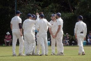 Middleton celebrate a wicket / Picture by Kate Shemilt