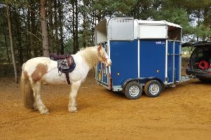 The blue trailer.