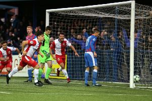 Linfield's Jimmy Callacher scores the opening goal against Ards
