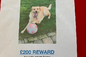 Have you seen Cassie?