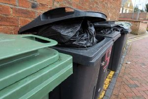 'Sensible-sized' bins are needed for the fortnightly collections