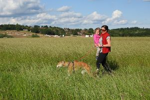 Horsted Green Park, Wealden's latest open access countryside area, will be officially opened on Wednesday
