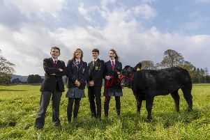 Pictured representing their schools' team are from left: Alan Kelly of Fivemiletown College; Samantha Todd, Wallace High School; Jack Owens, the Royal Belfast Academical Institution and Molly Bradley, Aughnacloy College