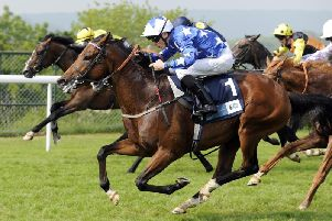 Aspetar (nearest the camera) gets up to win the 2018 Cocked Hat Stakes at Goodwood / Picture by Malcolm Wells