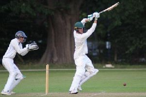 Louis Kimber batting against Hertfordshire. Photo: John Van-der-Vord.
